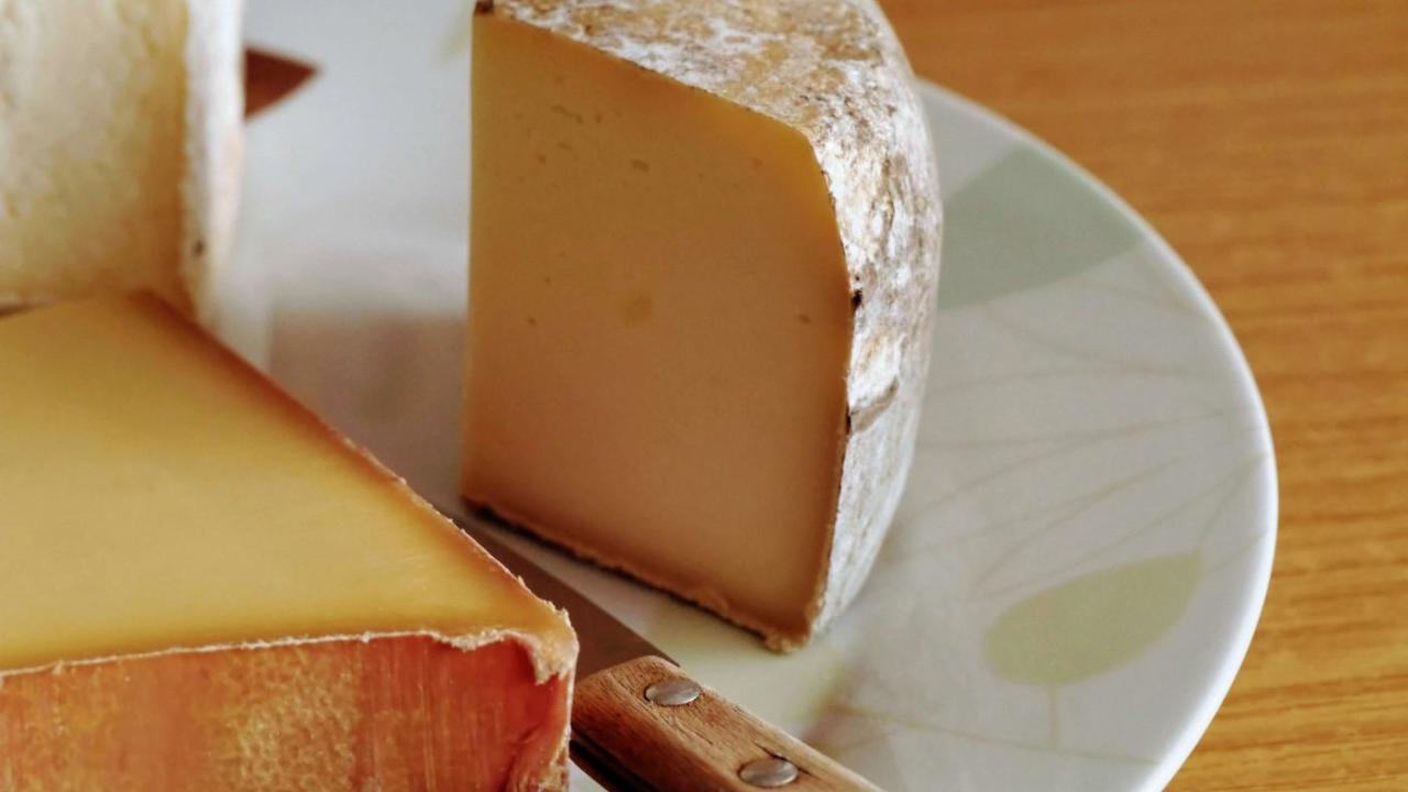 会社辞めたいけど辞められないのは、腐ったチーズにすがりついてるから