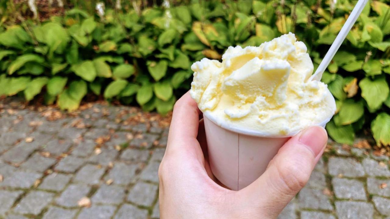 ポーランドのアイスクリーム